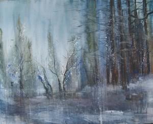hiver en forêt d'Ardenne