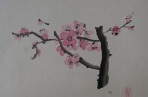fleurs de cerisiers